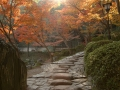 1280px-wakayama_castle_nishinomaru_garden01n4592