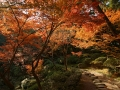 1280px-wakayama_castle_nishinomaru_garden08n4592