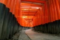 Japon | Photos de Jardin Japonais