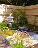 Jardin de thé en kit -Jardin Japonais-