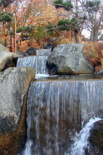 Cascade japonaise de pr s photos de jardin japonais for Cascade jardin japonais