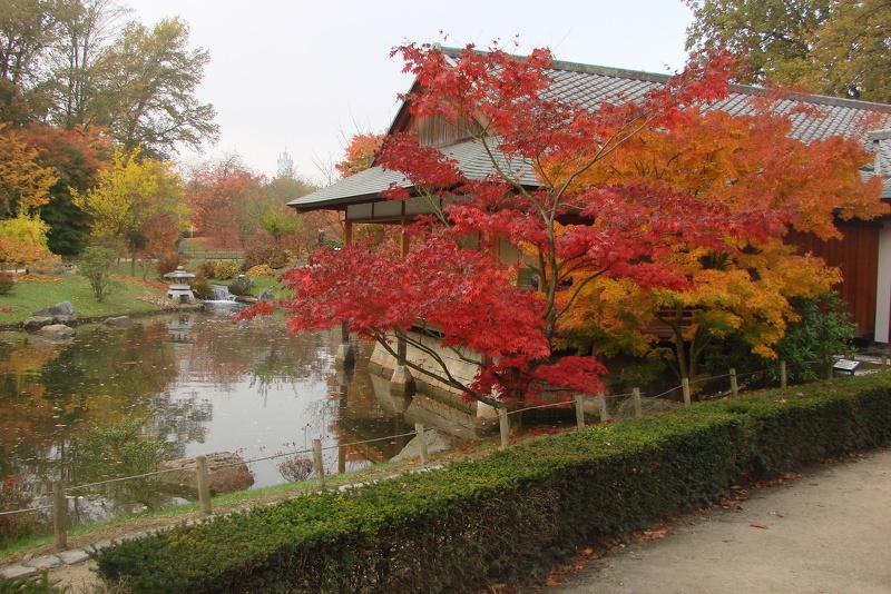 Pavillon lanterne et lac photos de jardin japonais for Lanterne jardin japonais