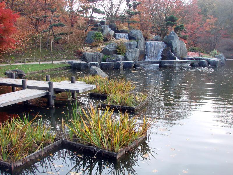 La cascade vue des pontons photos de jardin japonais for Cascade jardin japonais
